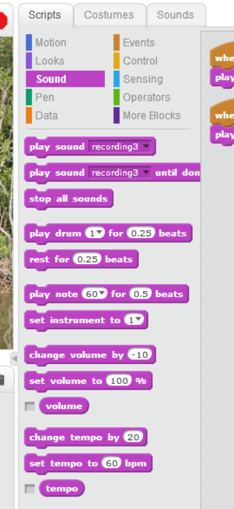 scratch programming sound